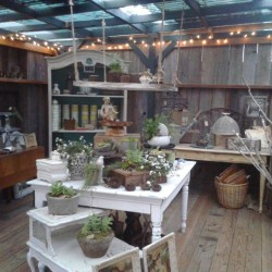 Greenhouse Room